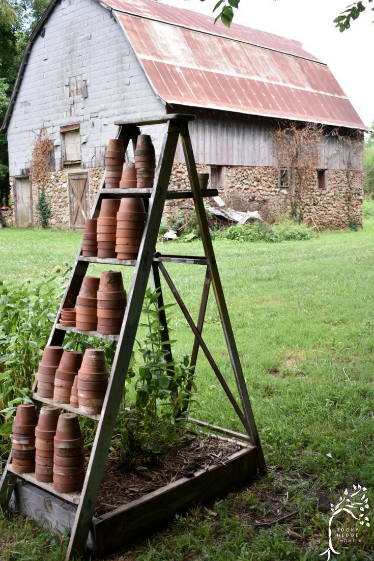 An old vintage ladder filled with terra cotta clay pots. #vintageladder #woodladder #antiqueladder #gardendecor
