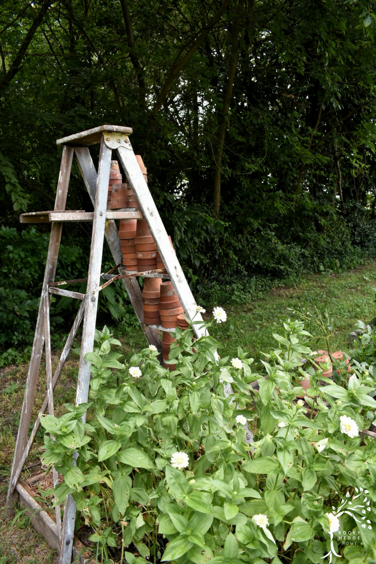 Vintage ladder in the flower garden filled with old terra cotta clay pots.