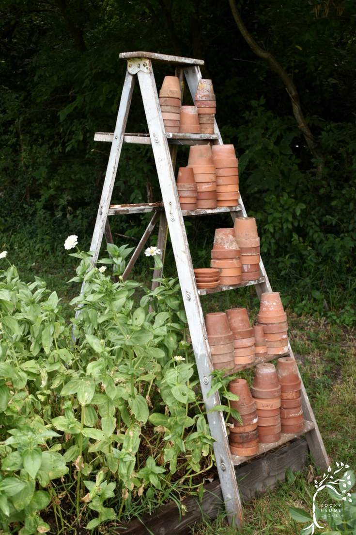 Vintage garden decor using an old white ladder with terra cotta pots.