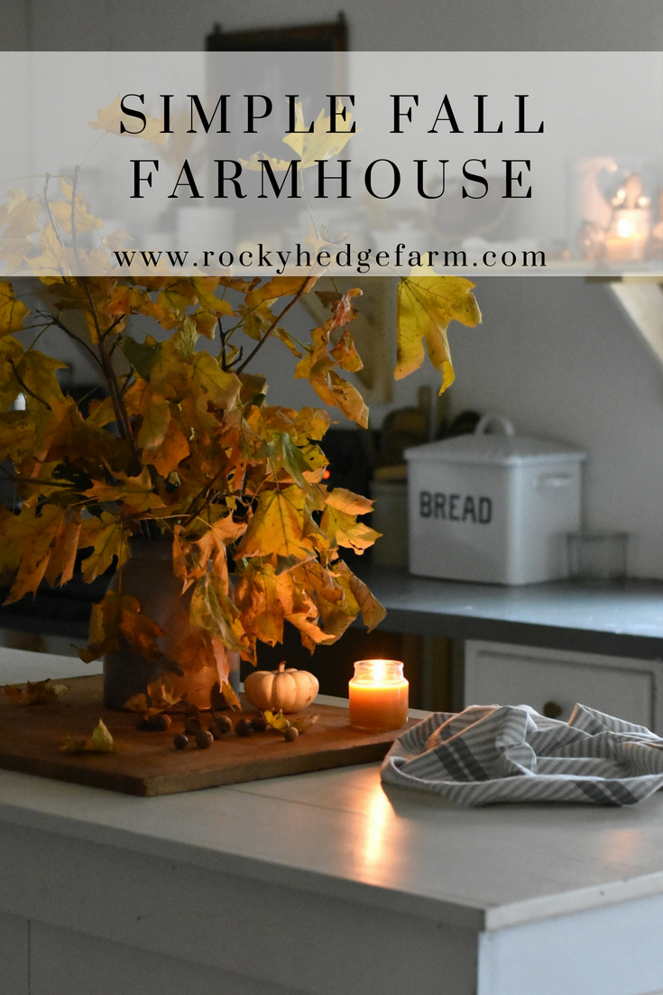 How tor create a cozy feeling for fall in your home using items found in nature. #farmhousefall #autumndecor #autumnfarmhouse #farmhousetour #farmhousesimple