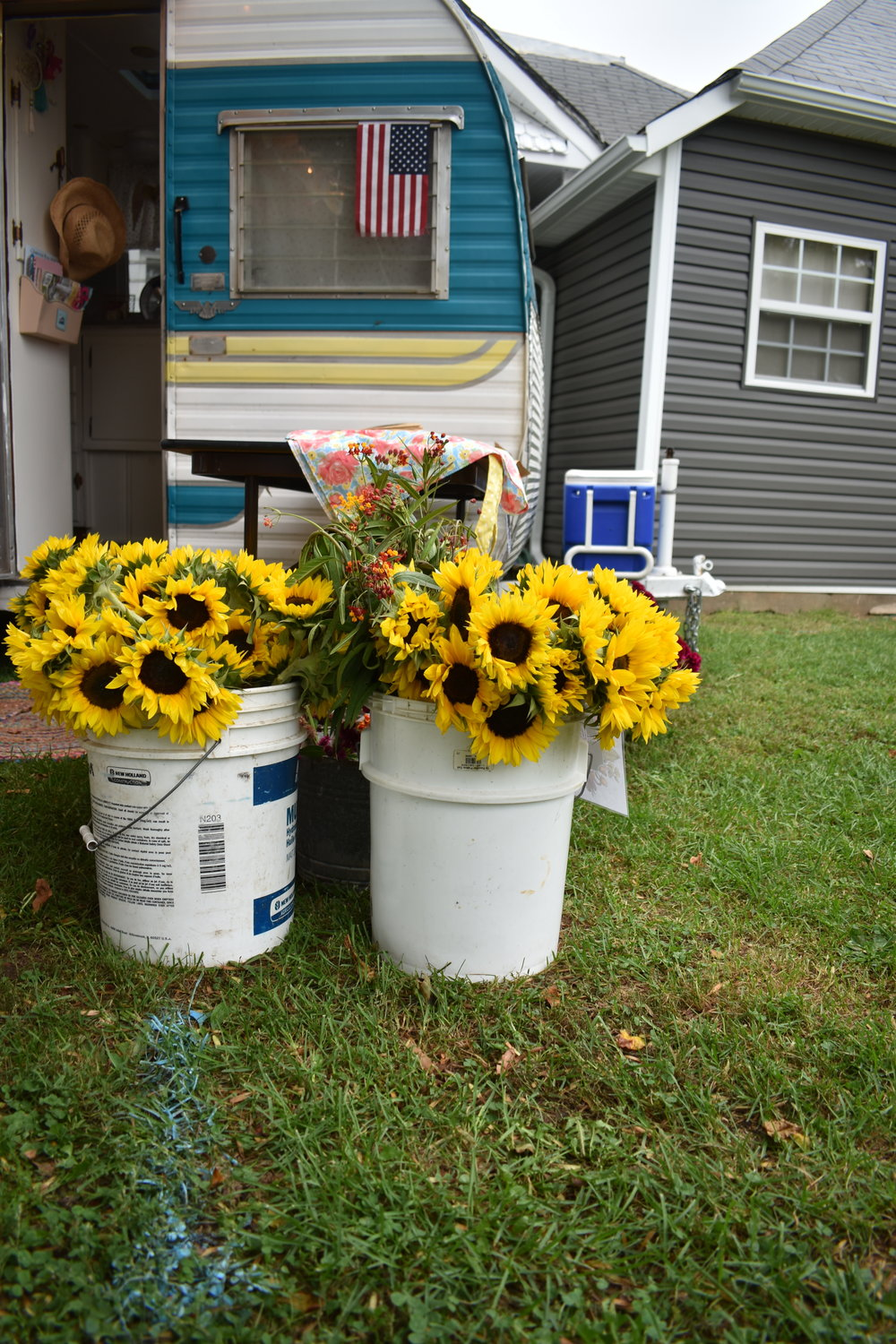 Sunflowers for Sale at Sugar's Pies and Sundries