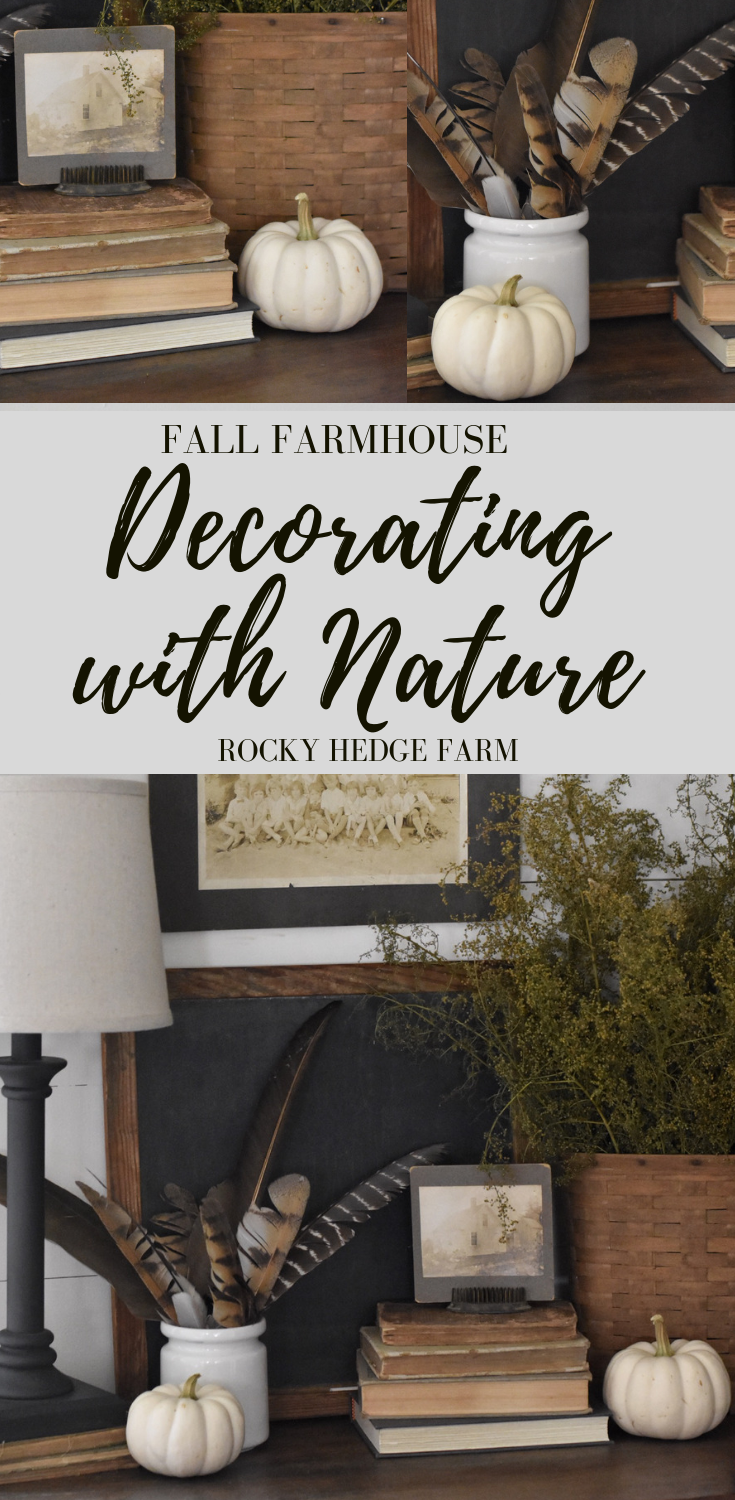 Decorating with nature for a fall farmhouse feel