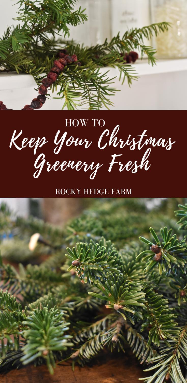 How to Keep Christmas Greenery Fresh and Beautiful