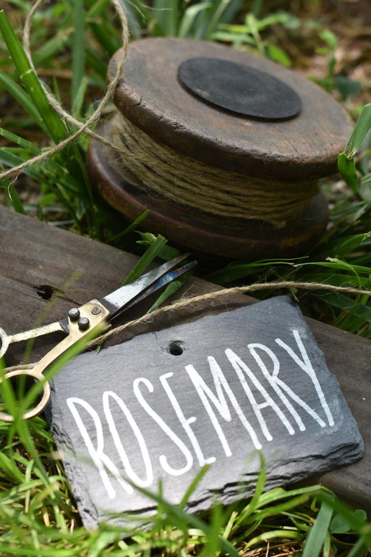 EASY Beautiful DIY Garden Marker Labels | Rocky Hedge Farm