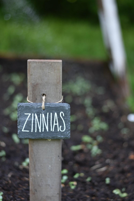 Flower Garden Markers Labels | Rocky Hedge Farm