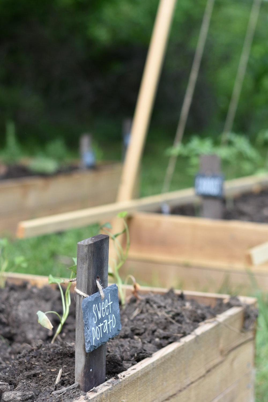 Easy Garden Marker | Rocky Hedge Farm