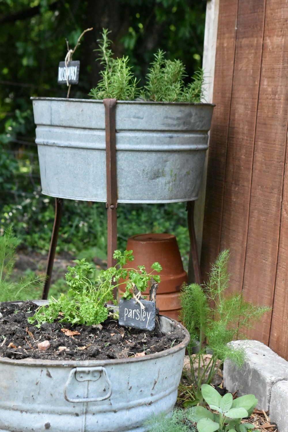 Galvanized Herb Washtub Garden | Rocky Hedge Farm