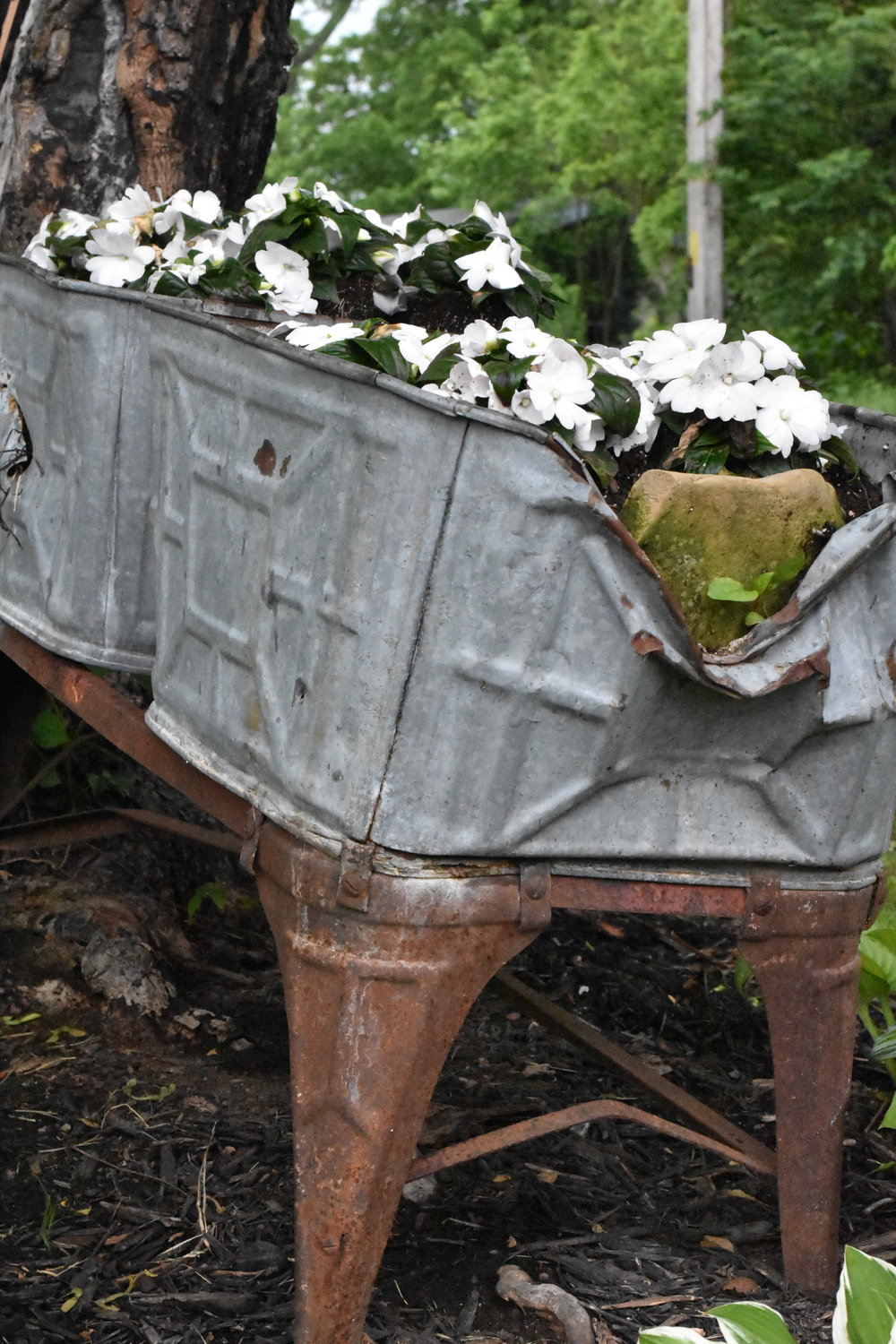 old washtubs used for flowers in the garden | Rocky Hedge Farm