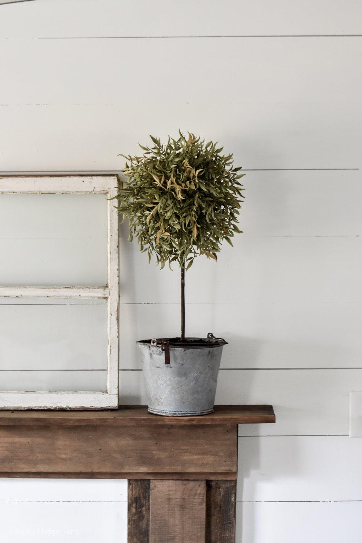 DIY Topiary Tree that looks real.jpg