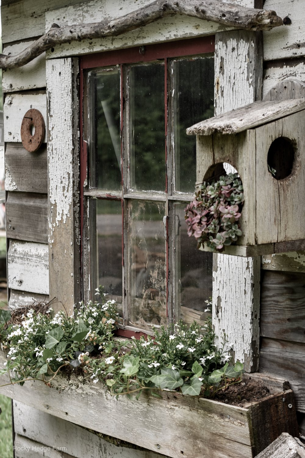 Small rustic garden shed decor with wooden window box | Rocky Hedge Farm