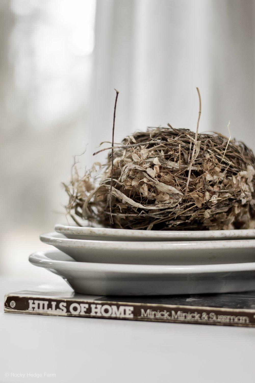 Spring Farmhouse Vignette   Birds Nest and Ironstone   Rocky Hedge Farm