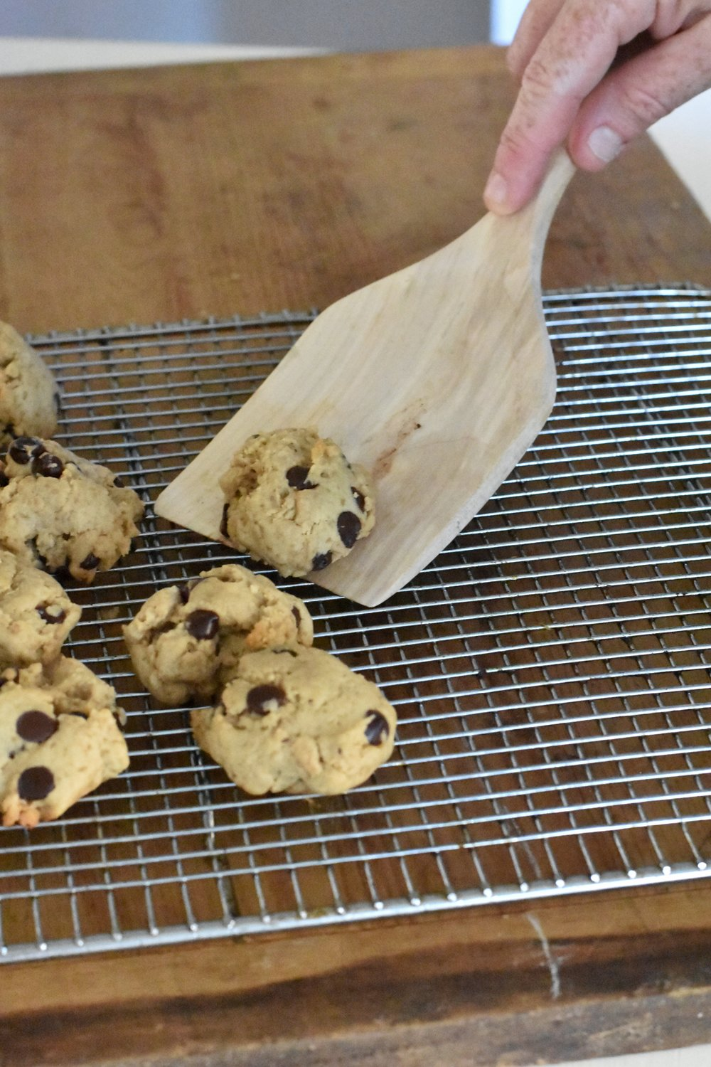 The Best Chocolate Chip Cookies - Soft - Chewy and Delicious | Rocky Hedge Farm