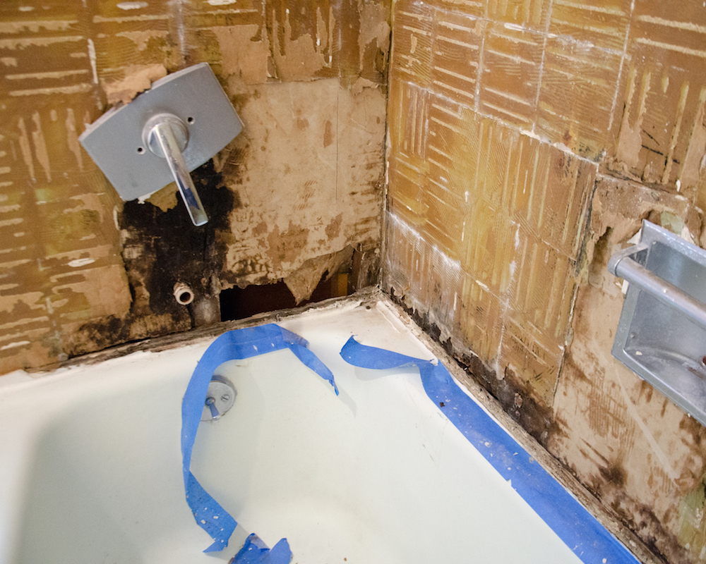 The trouble spot, and where our shower was leaking like crazy. Look at all that mold and rot!