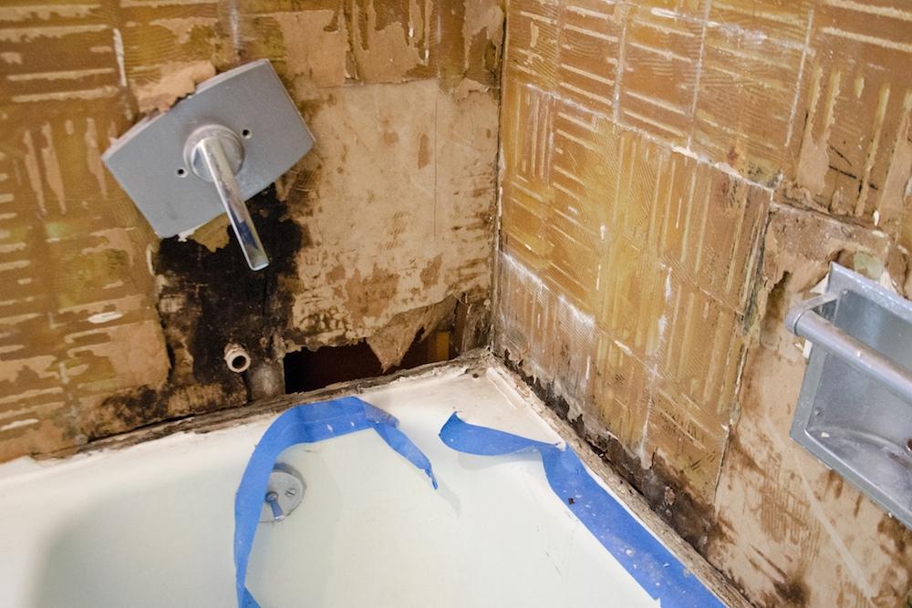 Full Bathroom Renovation: Week 1 Progress — Salt & Rook