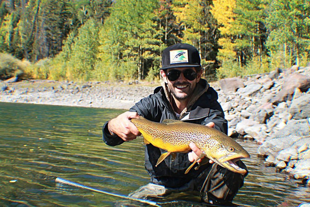 Having a long handle net when fishing stillwater in the mountains of Utah to catch massive Tiger Trout like this can often make the difference in landing one or not.
