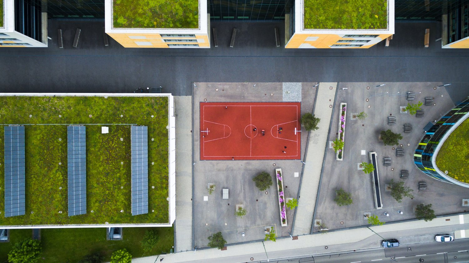 Making a Sustainable Impact with Rooftop Gardens