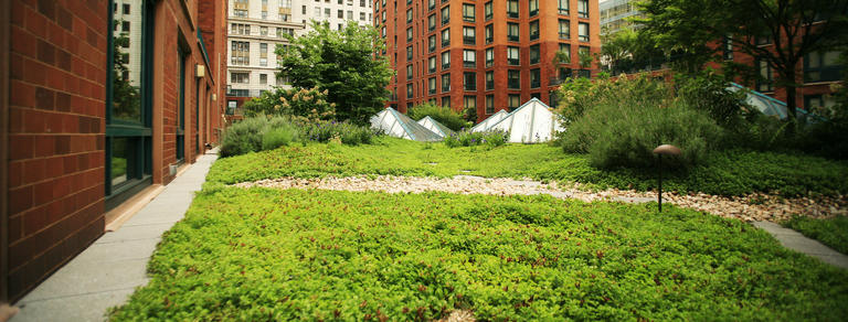 The Benefits Of A Green Roof Go Way Beyond Economics