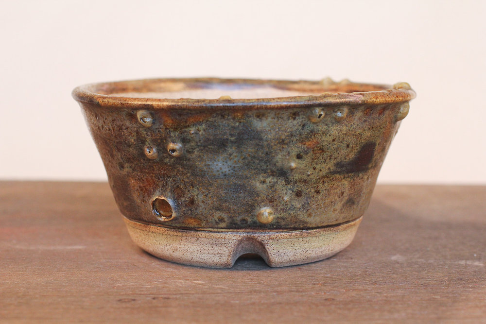 "Rustic Crater Textured 4.5"" Semi-Cascade Bonsai Pot"