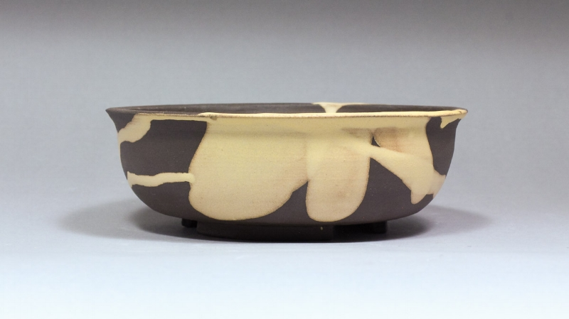Unglazed Bonsai Pot with Yellow Splash by Ashley Keller