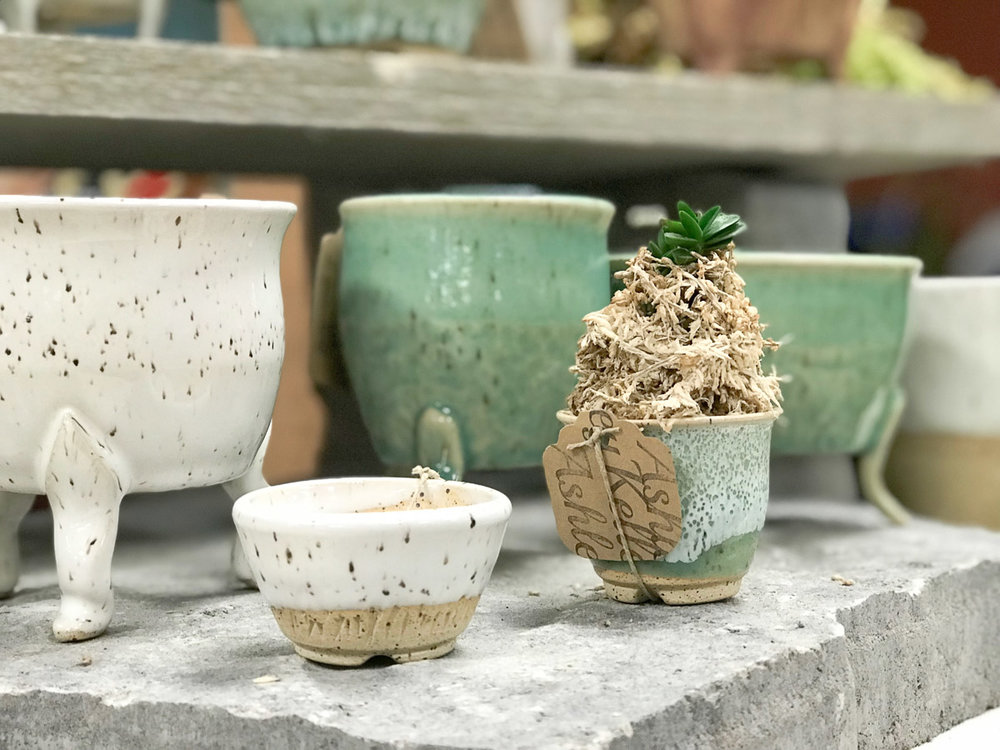 ashley-keller-bonsai-pot-3.jpg