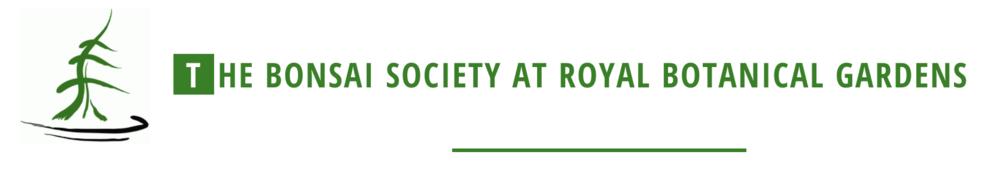 Bonsai Society at Royal Botanical Gardens