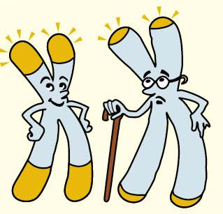 telomere-cartoon-compressed.jpg