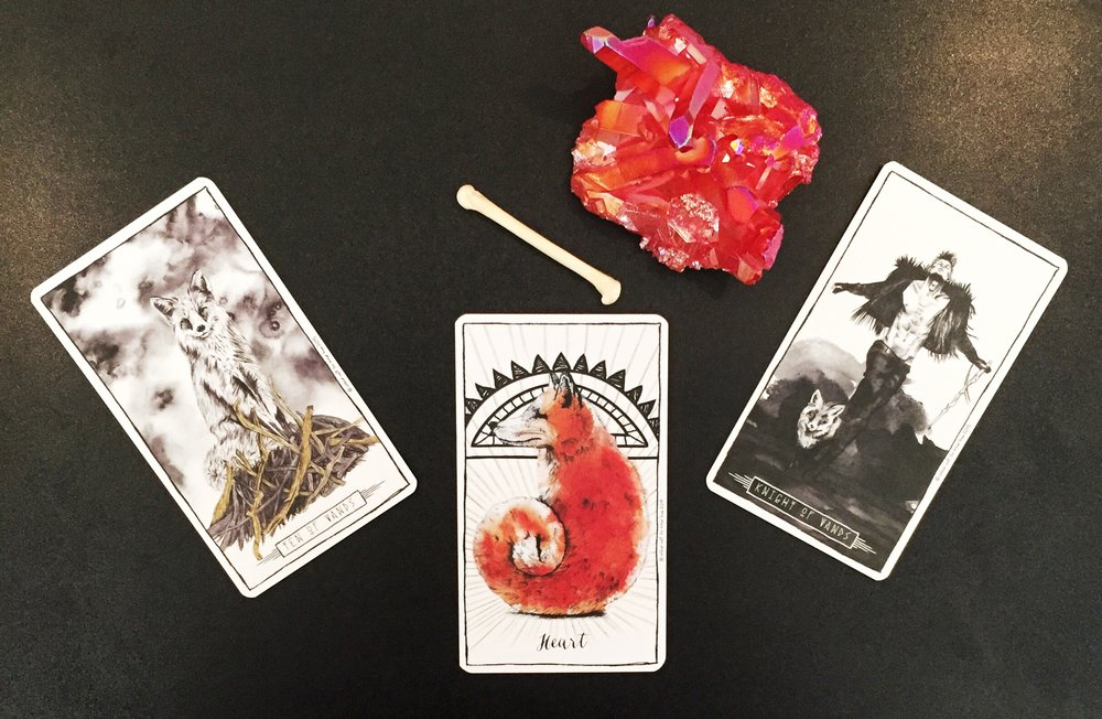 fox-cards-pic.jpg