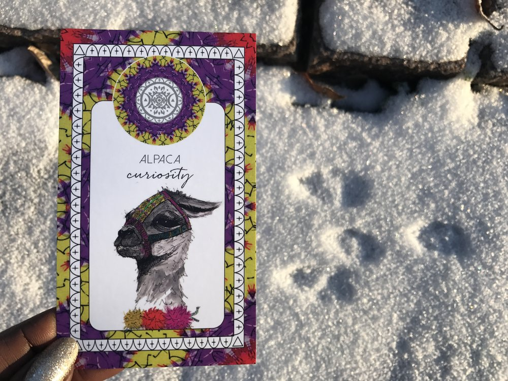 Deck: Animal Kin Oracle Cards by The Fifth Element Life (Sarah Wilder)