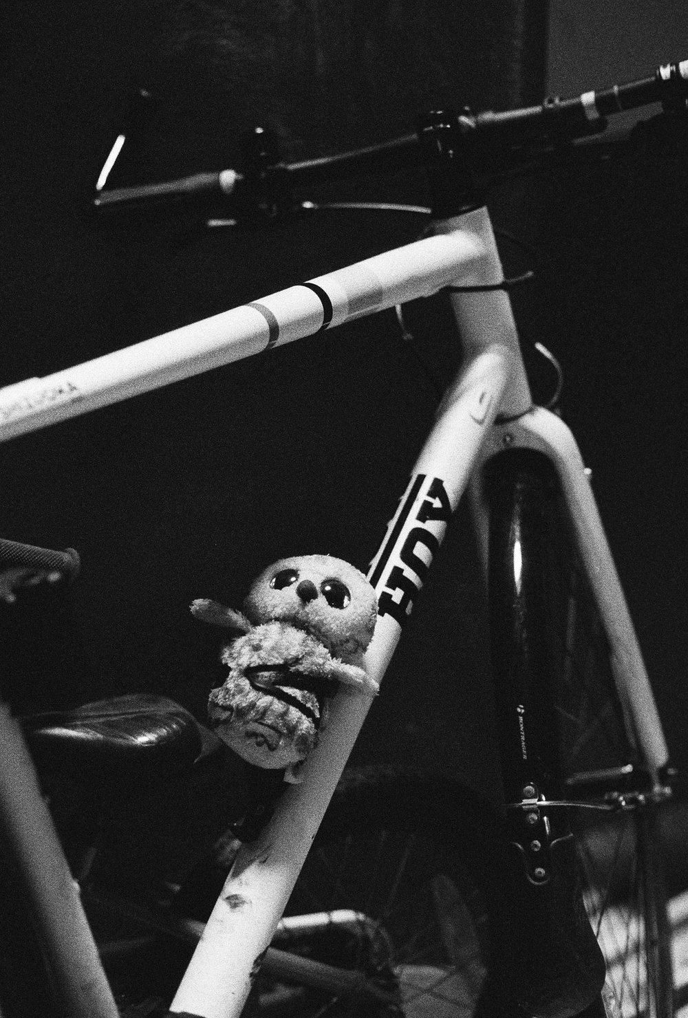 My neghbour's child had left their stuffed owl in the bottle carrier of their bike in the stairwell, I had a roll of Delta 3200 to test in low light situations and thus this photo. It's a very grainy film and the lens must've been wide open which adds a certain atmosphere, as does the fact that all the light on the scene is falling on that bike and it's passenger.