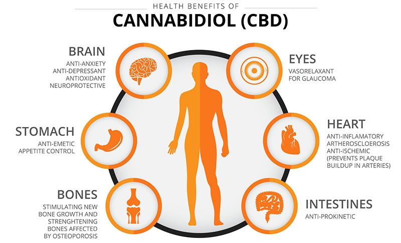 CBD OIL 8 benefits.jpg