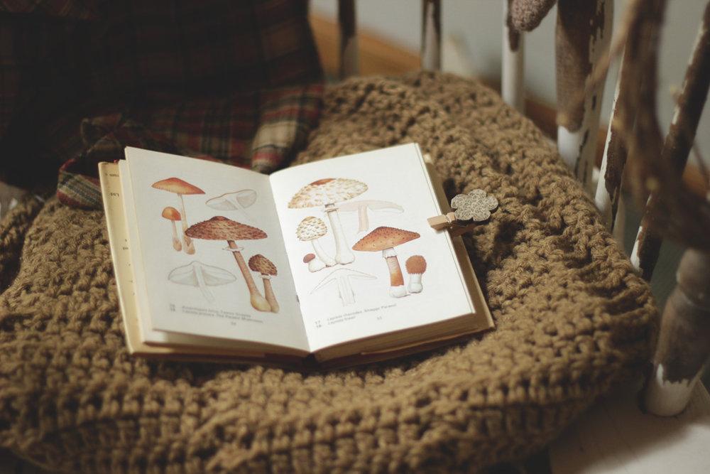 colecciones - libros de historia natural.JPG