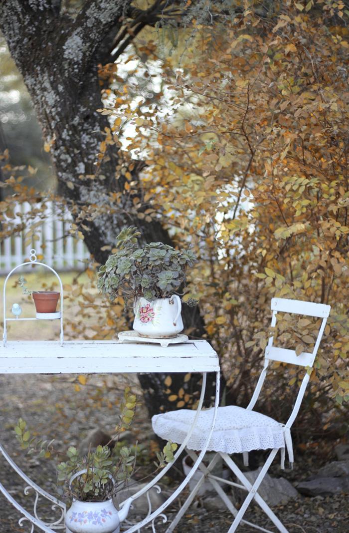 mi casita en el bosque - jardin de casa en otoño.jpg