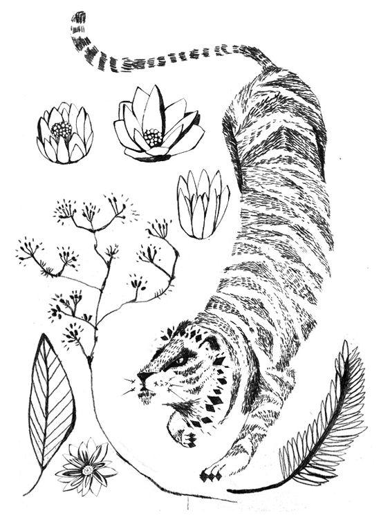 mariamontiel_tigre dibujo.jpg
