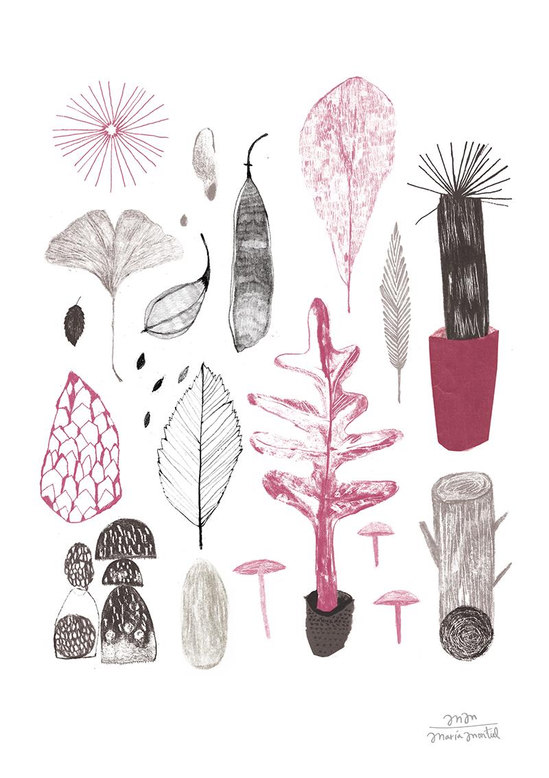 mariamontiel_flora dibujo 2.jpg