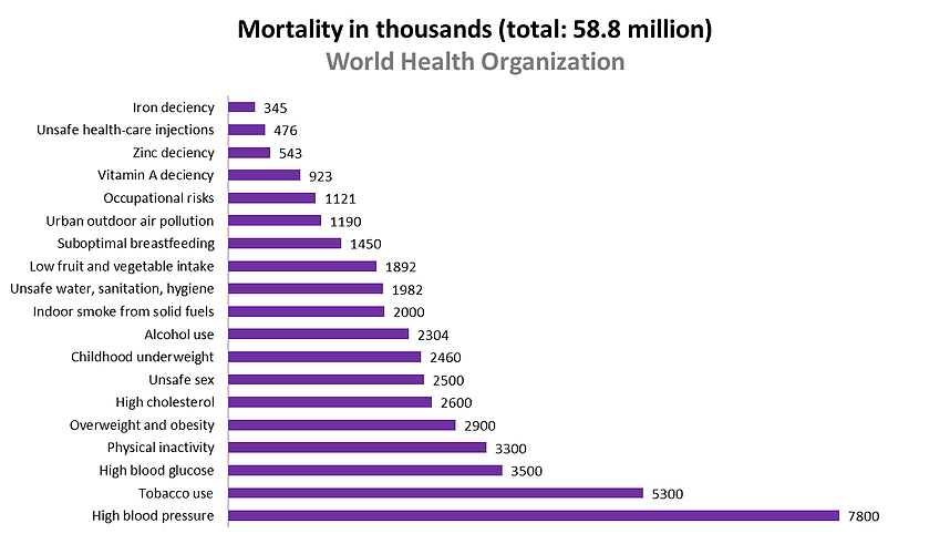 Figure 1: Deaths attributed to 19 leading risk factors (World Health Organization).