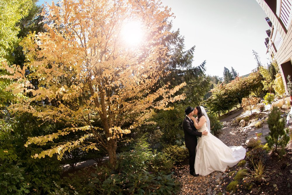 Bride & Groom Kiss by Tree.jpg
