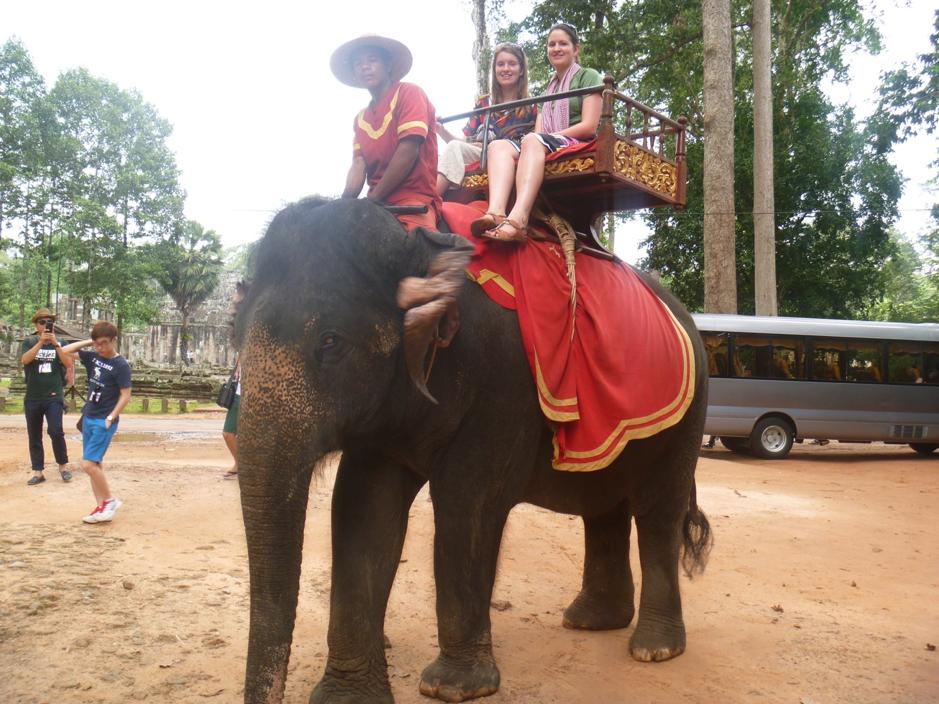 Elephant 2012.png