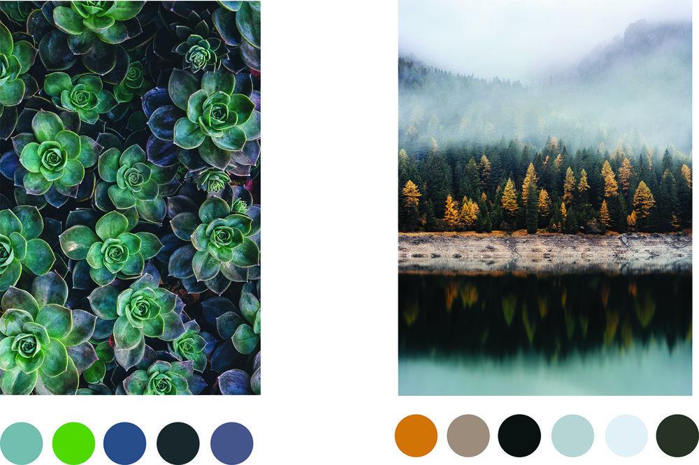 color_swatch.jpg