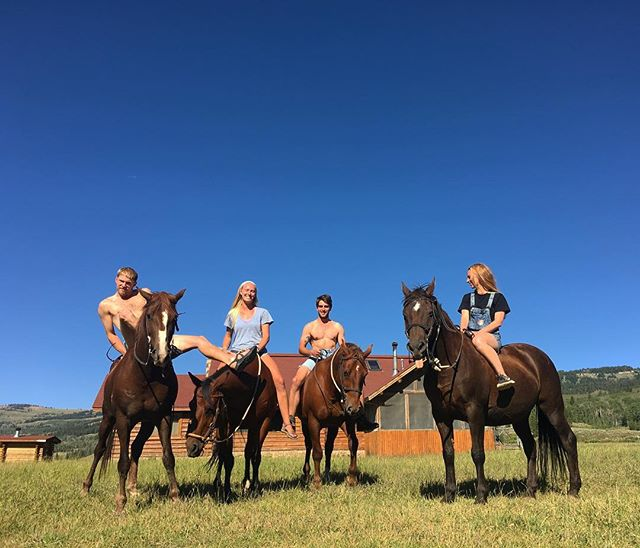 Suns out, Guns out, Concho's got his tongue out. 👅 #darwinranch #sunsoutgunsout #mattsgotanewhaircut #ranchlife #horses #crewdem