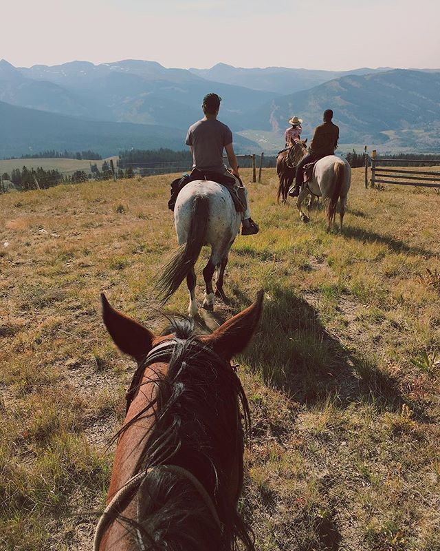 The view from our backyard. 🌿 @lifebetweentheears #darwinranch #wyoming #lifebetweentwoears #trailride #wilderness #view #mountain #explore #cowboy #adventure #horses