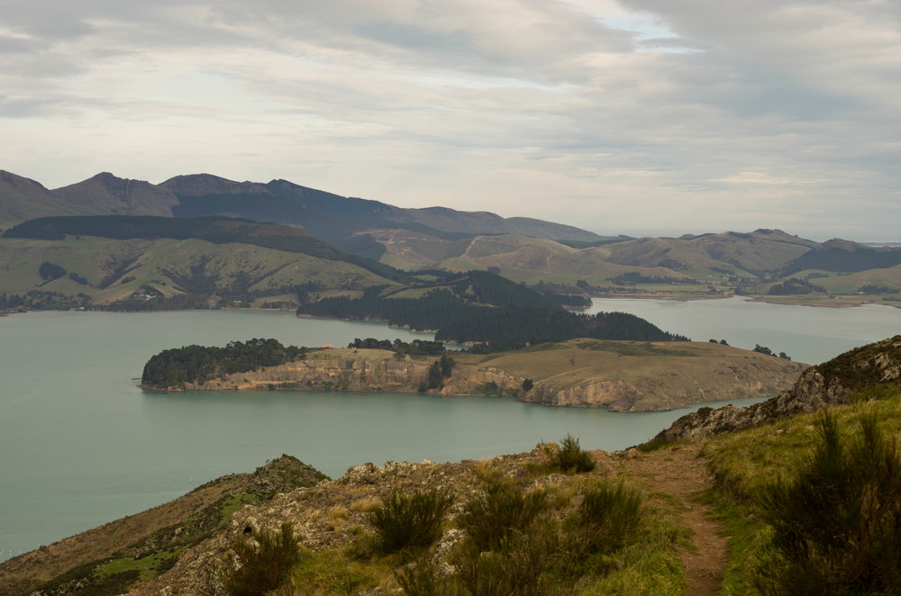 Quail Island and Lyttleton Harbour, New Zealand