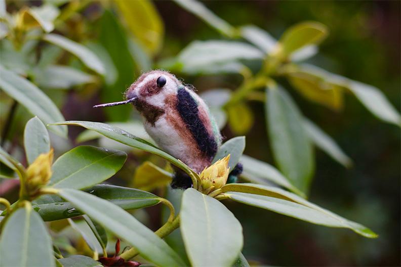 felted-hummingbird-web.jpg