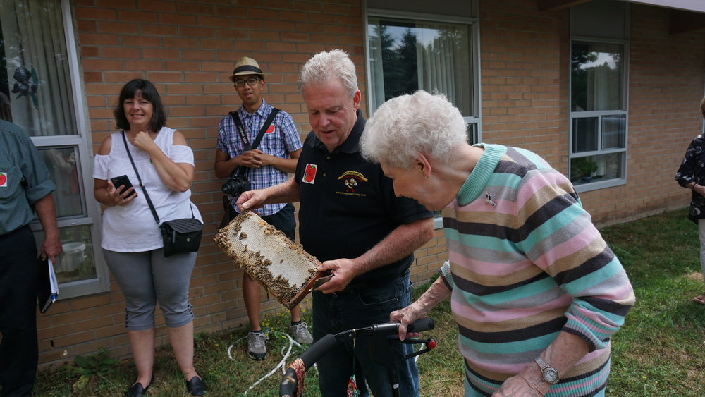 Resident council Ila Ellison with beekeeper Peter Dickey examining a slab from the beehive
