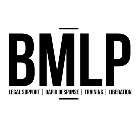 Black Movement Law Project