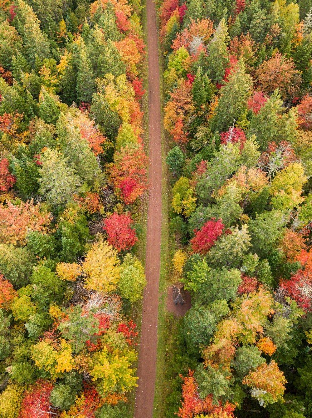 Confederation Trail 164323_max.jpg