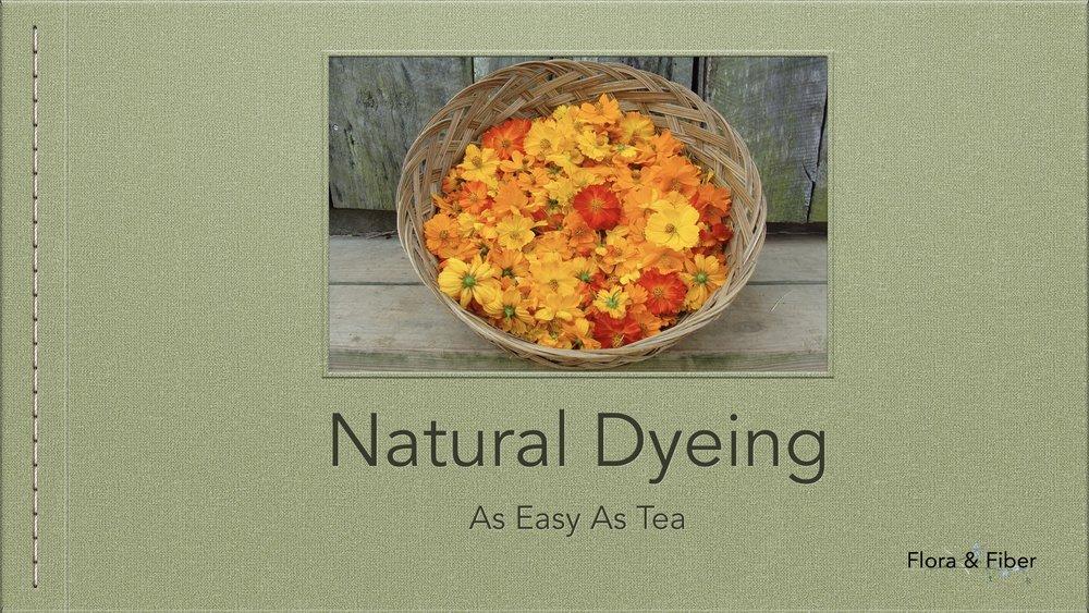 skillshare+online+class+natural+dye