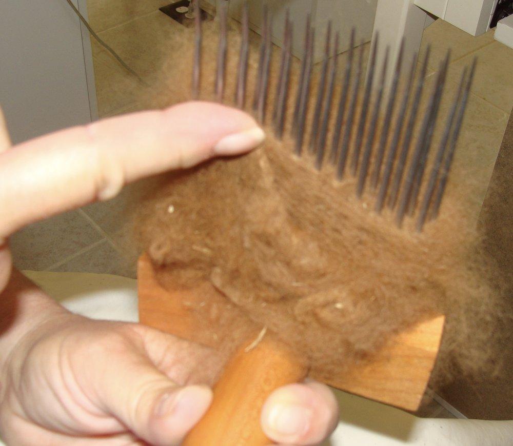 combing alpaca