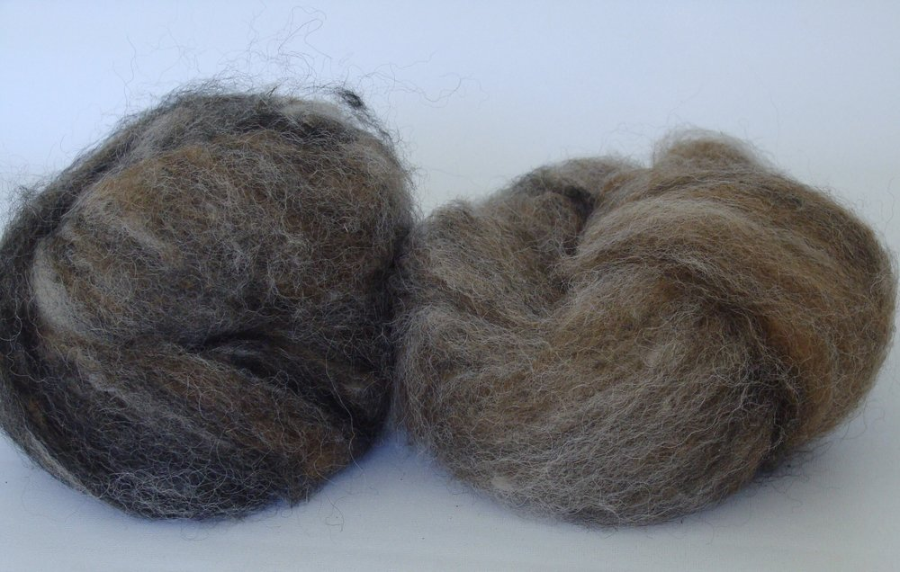 drum carded alpaca roving - blended colors