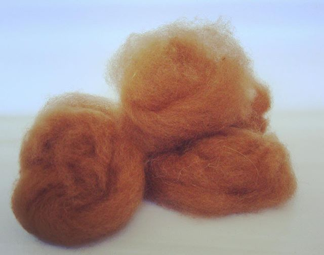Ooooooh! Heavenly soft alpaca just waiting to be spun.  Www.florafiber.live/blog/2017/10/21/alpaca-fleece-now-what