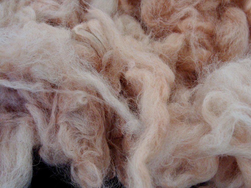 madder dyed alpaca fiber